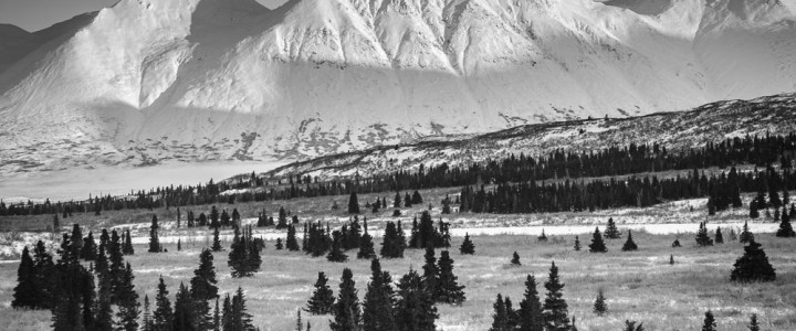 Chilkat Summit Photo and a funny story (sort-of)